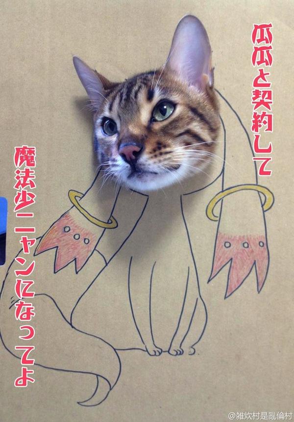 """Loài mèo biến hình qua những sáng tạo """"buồn cười"""" 2"""