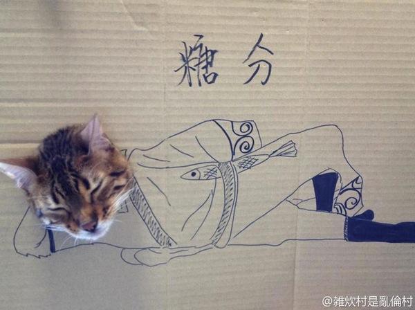 """Loài mèo biến hình qua những sáng tạo """"buồn cười"""" 4"""