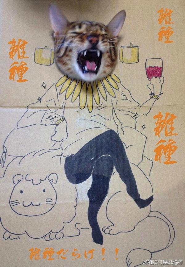 """Loài mèo biến hình qua những sáng tạo """"buồn cười"""" 5"""