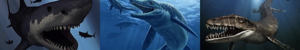 Đi tìm thủy quái bí ẩn gây kinh hãi người dân Canada 10