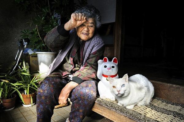 Chùm ảnh về cuộc sống thường ngày của một cụ bà người Nhật và chú mèo mắt hai màu 7