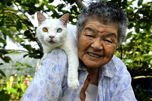 Chùm ảnh về cuộc sống thường ngày của một cụ bà người Nhật và chú mèo mắt hai màu 16