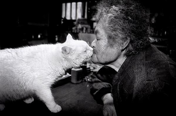 Chùm ảnh về cuộc sống thường ngày của một cụ bà người Nhật và chú mèo mắt hai màu 18
