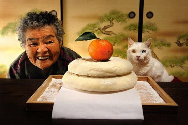 Chùm ảnh về cuộc sống thường ngày của một cụ bà người Nhật và chú mèo mắt hai màu 14