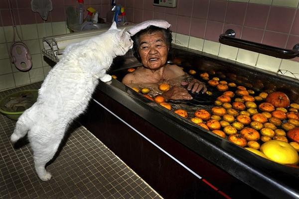 Chùm ảnh về cuộc sống thường ngày của một cụ bà người Nhật và chú mèo mắt hai màu 10