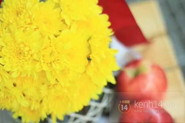 Xem nhanh cách cắm hoa cúc đơn giản 11