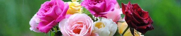 3 kiểu cắm hoa đơn giản mà đẹp mắt cho ngày 8/3 5