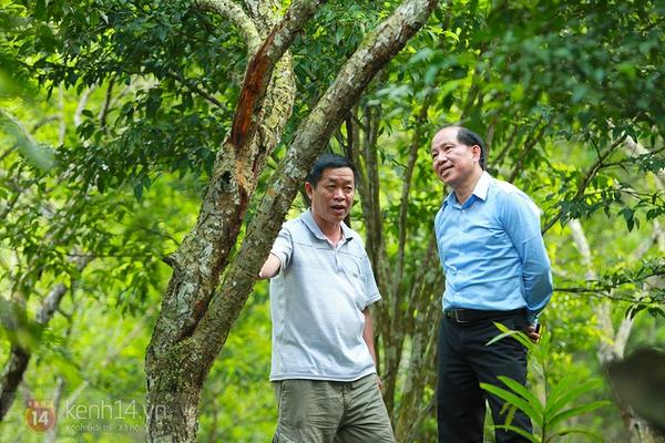 """Vườn mơ rừng trị giá hàng trăm triệu khiến giới trẻ Hà thành """"mê mẩn"""" 7"""