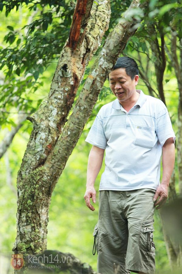 """Vườn mơ rừng trị giá hàng trăm triệu khiến giới trẻ Hà thành """"mê mẩn"""" 8"""