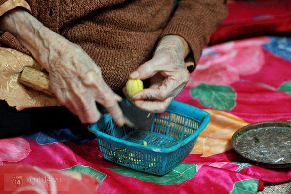 Nhai trầu quanh năm, cụ già ở Vĩnh Phúc sống lâu hơn trăm tuổi 14