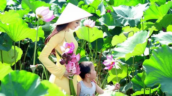 Muôn vẻ mỹ nhân Việt khoe sắc bên hoa sen 15