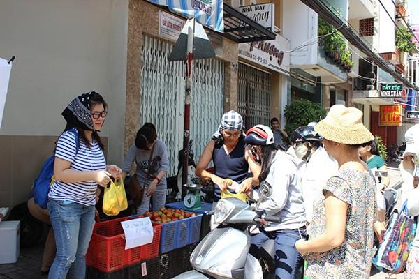 Xót xa nhìn cảnh cà chua ở Lâm Đồng phải bỏ đem cho bò ăn vì rớt giá 10
