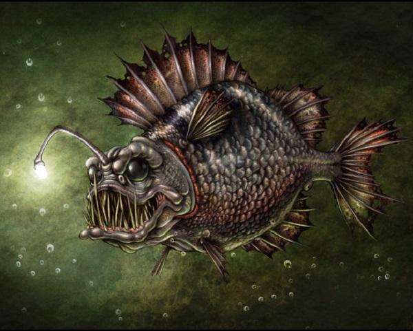 """Điểm tên các loài cá quái vật """"hiếm có khó tìm"""" trên Trái Đất 4"""