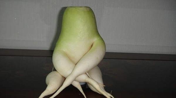 Chùm ảnh củ cải quái dị nhất quả đất 10