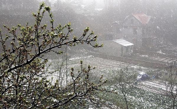 Vì sao tuyết rơi bất thường ở Việt Nam, Ai Cập và Trung Đông 11