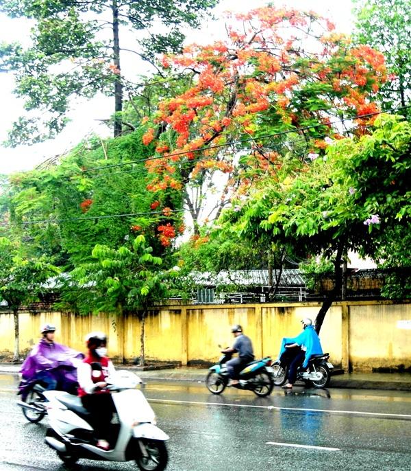 55 điều để bạn thấy Sài Gòn của mình tuyệt vời nhất! 7