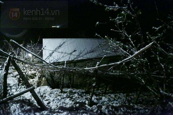 Chùm ảnh: Du khách thích thú chụp ảnh cùng tuyết trắng ở Sa Pa 1