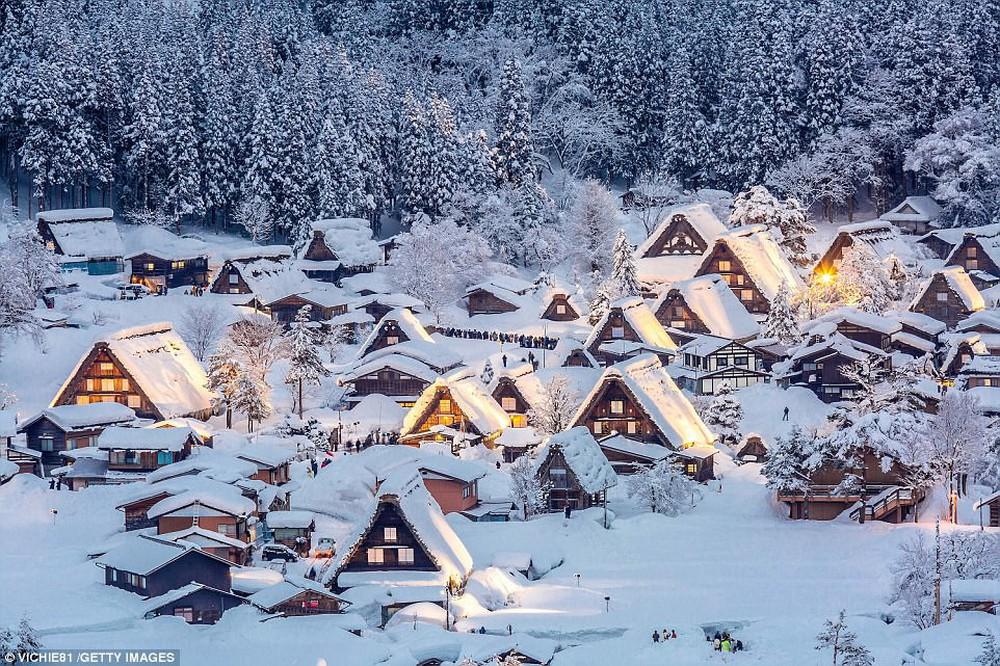 Chợ nổi Việt Nam được National Geographic vinh danh trong top điểm đến mùa đông trên toàn thế giới - Ảnh 3.