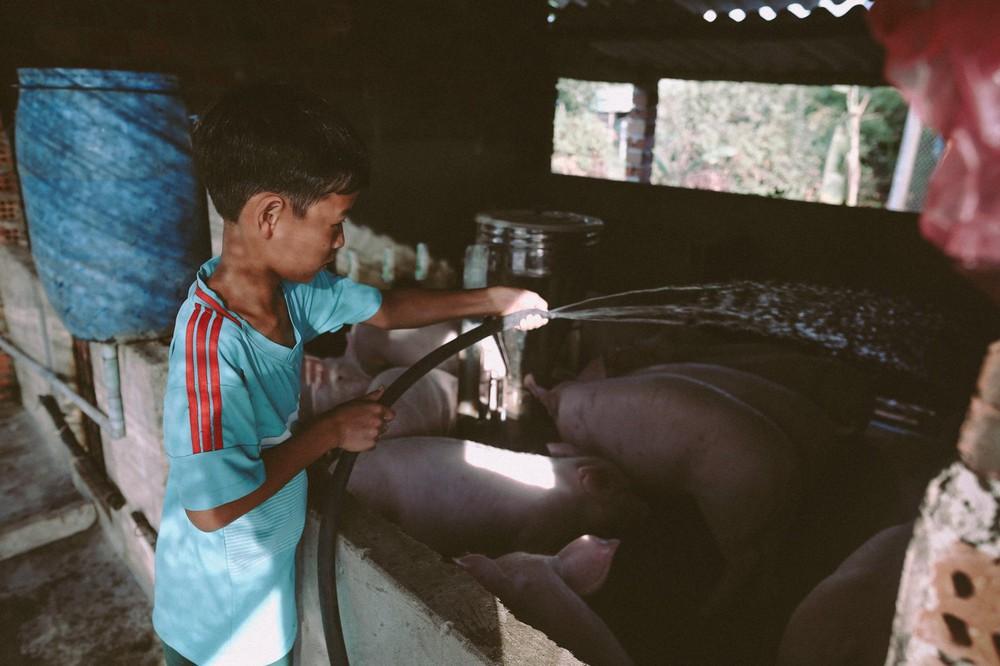 Bộ ảnh xúc động về cậu bé mồ côi ở Quảng Nam tự lập từ năm 12 tuổi, nuôi lợn để được đến trường - Ảnh 15.