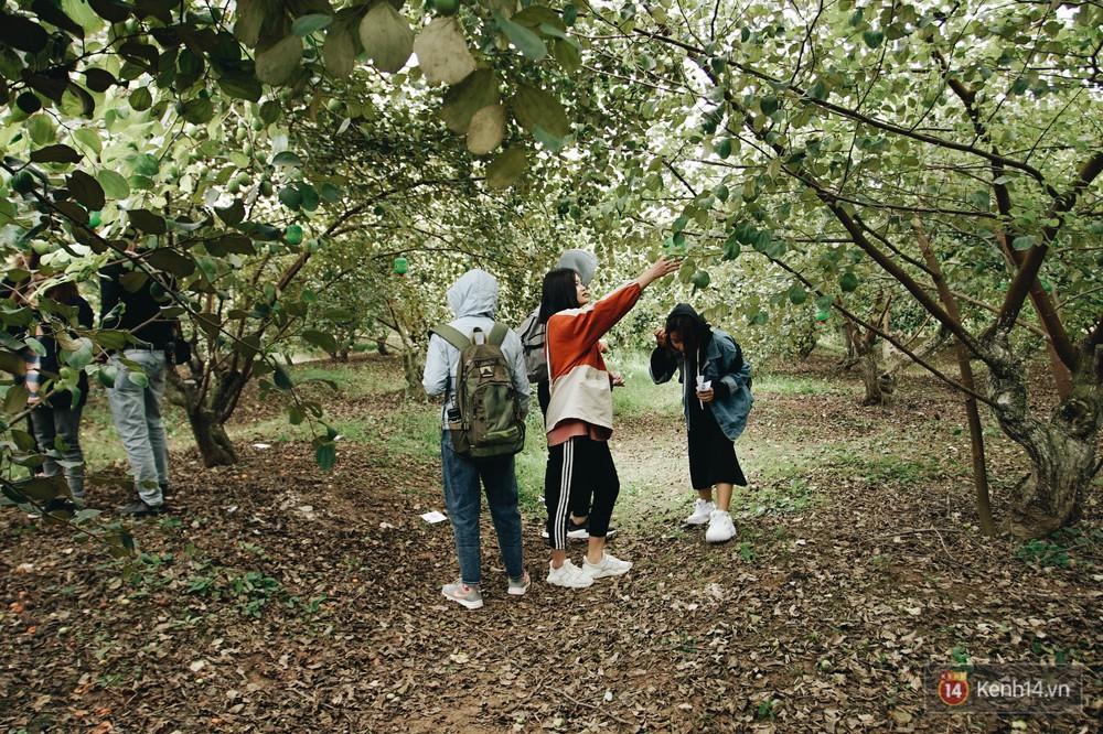 Mùa táo, mùa hoa cải đến rồi, sang Học viện Nông nghiệp ăn tẹt ga, sống ảo cực chất chỉ với 15 nghìn - Ảnh 9.