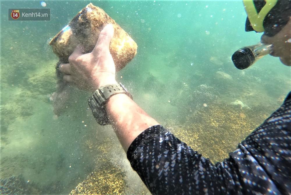 Gặp anh giám đốc mê nhặt rác ở Đà Nẵng: 10 năm dọn vệ sinh không công dưới đáy biển - Ảnh 2.