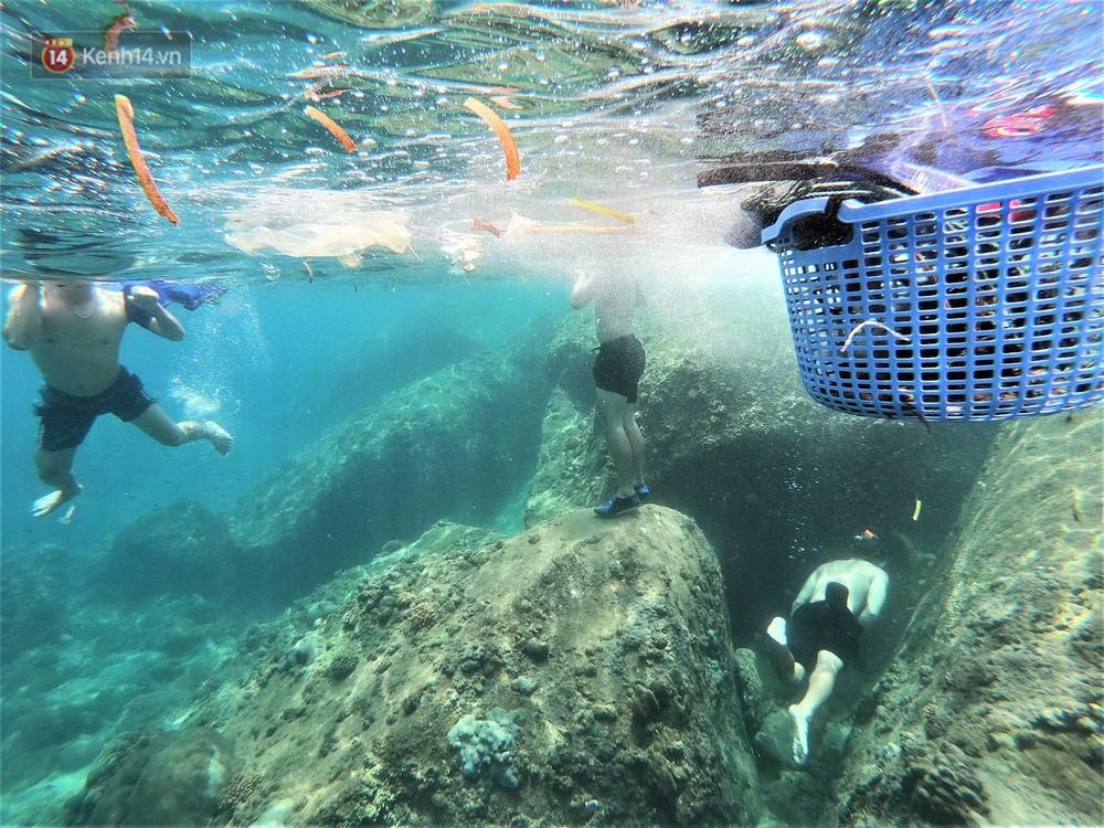 Gặp anh giám đốc mê nhặt rác ở Đà Nẵng: 10 năm dọn vệ sinh không công dưới đáy biển - Ảnh 9.