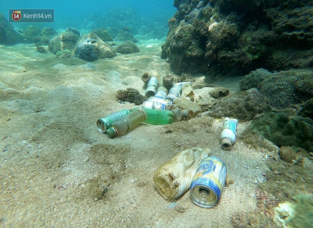 Gặp anh giám đốc mê nhặt rác ở Đà Nẵng: 10 năm dọn vệ sinh không công dưới đáy biển - Ảnh 5.