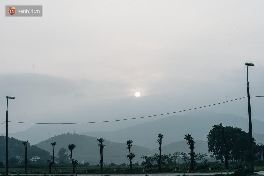 Cuộc di cư của 96 cây hoa sữa từ hồ Tây ra bãi rác Nam Sơn: Đâm chồi lộc xanh, hy vọng khuếch tán mùi hôi thối - Ảnh 9.