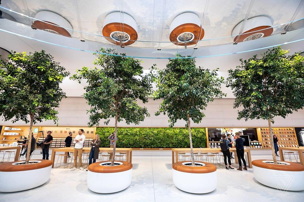 Vẻ đẹp gây nghiện của Apple Store chất nhất thế giới: Kiệt tác dưới lòng đất, hút khách hơn cả tượng Nữ thần Tự do - Ảnh 7.