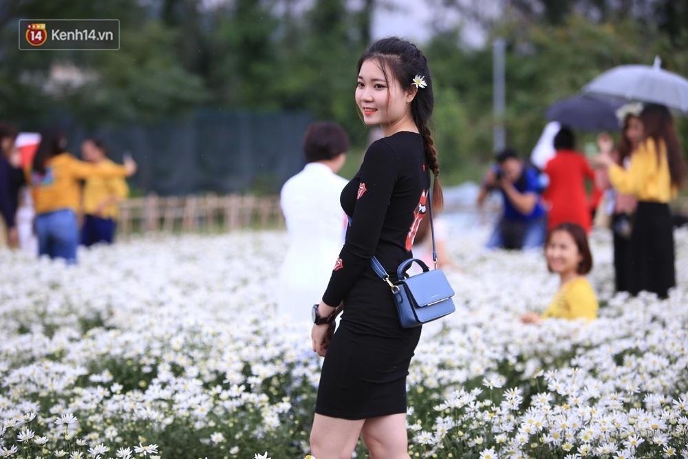 """Hàng nghìn người chen chúc """"check in"""" vườn cúc họa mi lần đầu tiên được trồng ở Đà Nẵng - Ảnh 16."""