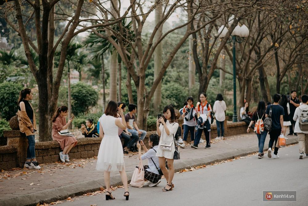 Sự thật phũ phàng tại con đường tình yêu đẹp nhất Hà Nội: Lá vàng rụng hết, người chật như nêm tranh chụp ảnh sống ảo - Ảnh 1.