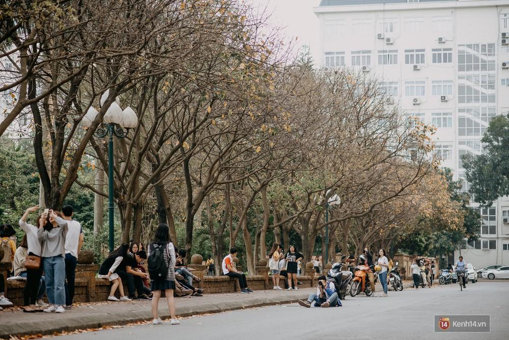 Sự thật phũ phàng tại con đường tình yêu đẹp nhất Hà Nội: Lá vàng rụng hết, người chật như nêm tranh chụp ảnh sống ảo - Ảnh 3.