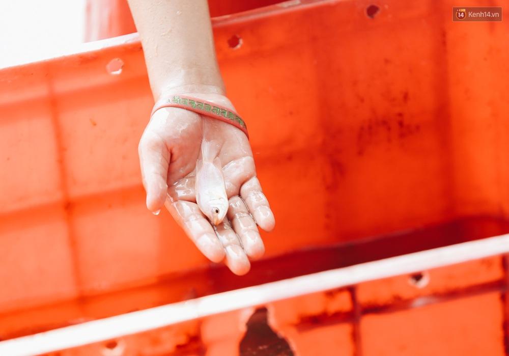 Ảnh: Chi 20 triệu mua cá chép rồi đi thuyền ra giữa sông để phóng sinh, người phụ nữ Sài Gòn vẫn choáng đặc khi thấy gã thanh niên lao theo chích điện để vớt cá - Ảnh 14.
