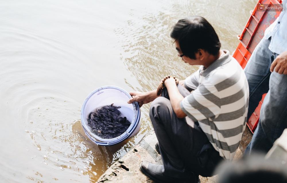 Ảnh: Chi 20 triệu mua cá chép rồi đi thuyền ra giữa sông để phóng sinh, người phụ nữ Sài Gòn vẫn choáng đặc khi thấy gã thanh niên lao theo chích điện để vớt cá - Ảnh 15.