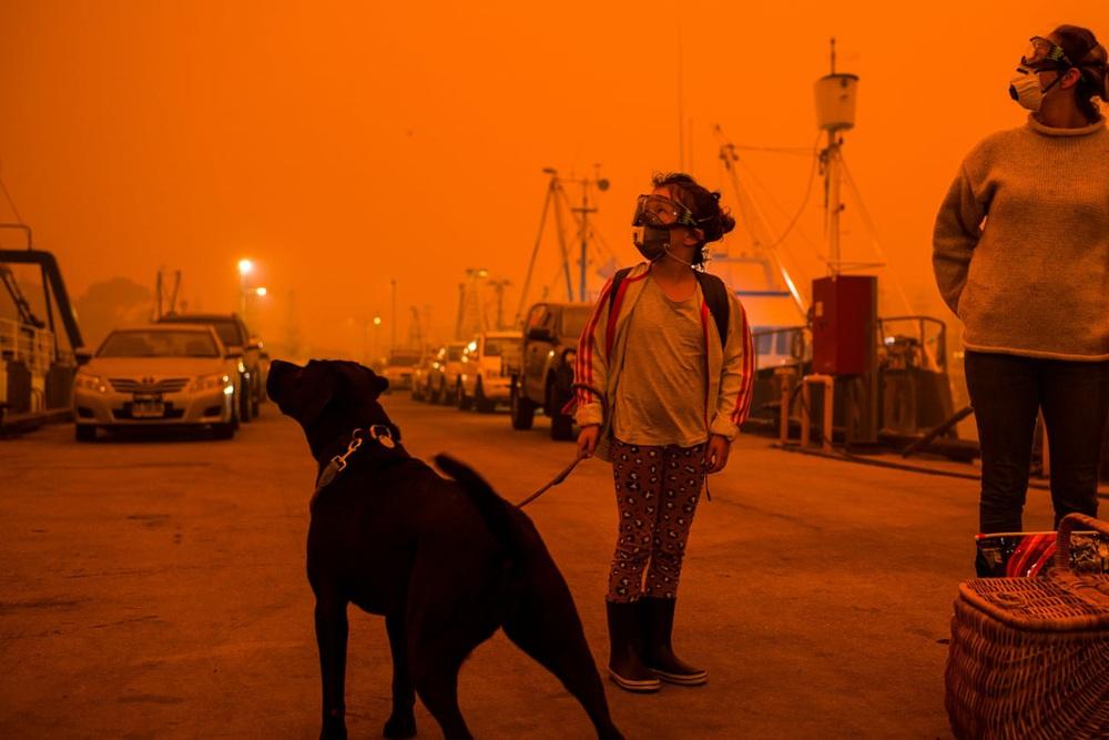 Một ngày cuối tuần chiến đấu với cháy rừng ở Úc: Khung cảnh hoang tàn trong lửa đỏ, cả con người và động vật đều phải xót xa đến rơi nước mắt - Ảnh 1.