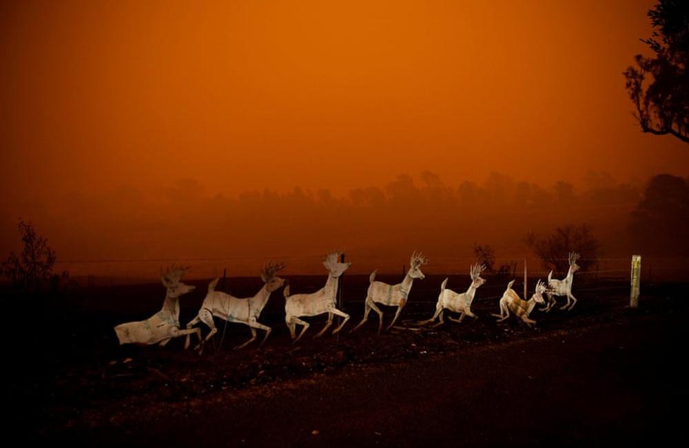 Một ngày cuối tuần chiến đấu với cháy rừng ở Úc: Khung cảnh hoang tàn trong lửa đỏ, cả con người và động vật đều phải xót xa đến rơi nước mắt - Ảnh 10.
