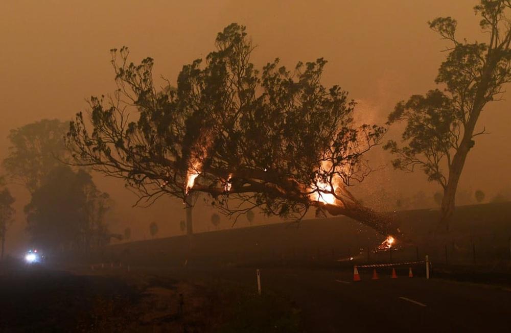 Một ngày cuối tuần chiến đấu với cháy rừng ở Úc: Khung cảnh hoang tàn trong lửa đỏ, cả con người và động vật đều phải xót xa đến rơi nước mắt - Ảnh 17.