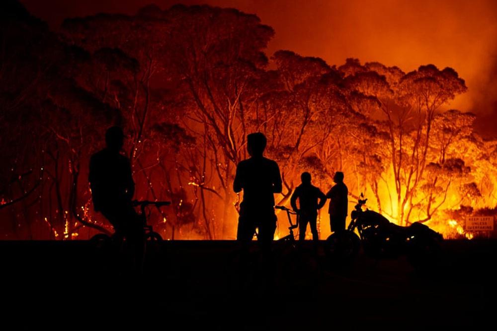 Một ngày cuối tuần chiến đấu với cháy rừng ở Úc: Khung cảnh hoang tàn trong lửa đỏ, cả con người và động vật đều phải xót xa đến rơi nước mắt - Ảnh 2.