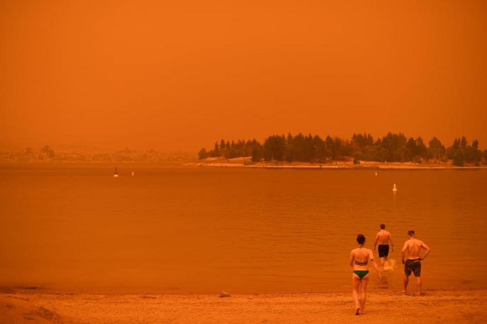Một ngày cuối tuần chiến đấu với cháy rừng ở Úc: Khung cảnh hoang tàn trong lửa đỏ, cả con người và động vật đều phải xót xa đến rơi nước mắt - Ảnh 20.