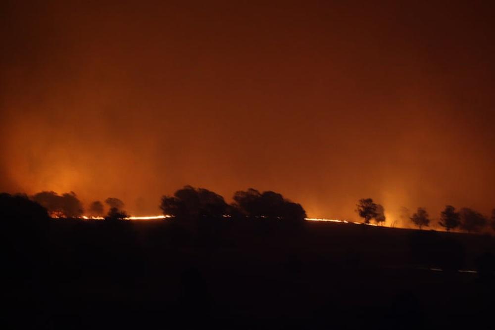 Một ngày cuối tuần chiến đấu với cháy rừng ở Úc: Khung cảnh hoang tàn trong lửa đỏ, cả con người và động vật đều phải xót xa đến rơi nước mắt - Ảnh 7.