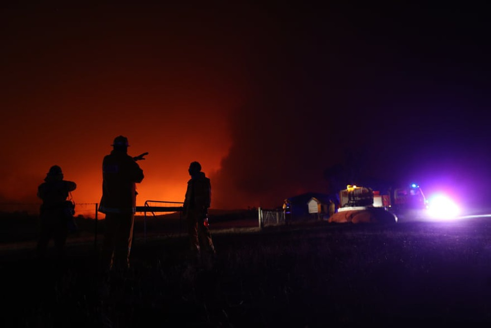 Một ngày cuối tuần chiến đấu với cháy rừng ở Úc: Khung cảnh hoang tàn trong lửa đỏ, cả con người và động vật đều phải xót xa đến rơi nước mắt - Ảnh 16.