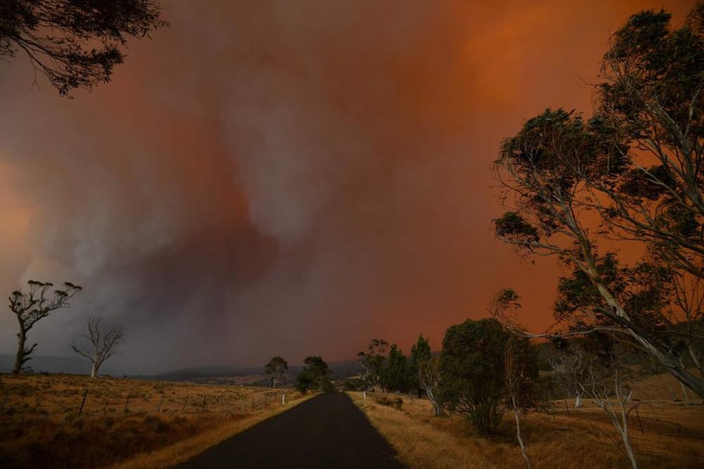 Một ngày cuối tuần chiến đấu với cháy rừng ở Úc: Khung cảnh hoang tàn trong lửa đỏ, cả con người và động vật đều phải xót xa đến rơi nước mắt - Ảnh 15.