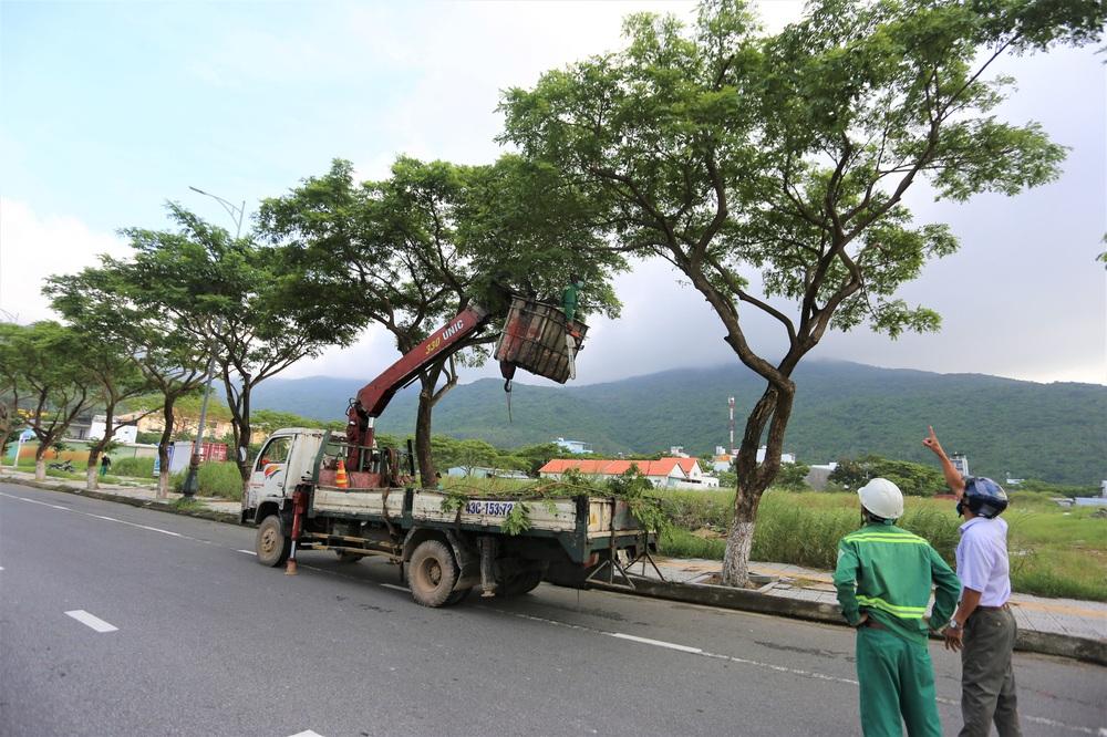 Người dân Đà Nẵng hối hả ứng phó bão số 9 giật cấp 15 đang tiến vào đất liền - Ảnh 16.