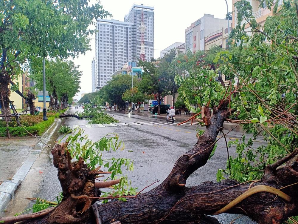 Đà Nẵng trong bão số 5: Mưa to kèm sấm chớp, nhiều tuyến đường ngập nước, cây đổ, cột điện gãy - Ảnh 14.