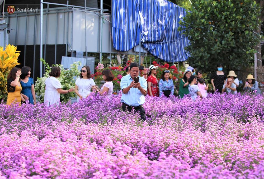 Dân tình chen chúc sống ảo tại vườn hoa thạch thảo đẹp lịm tim lần đầu được trồng ở Đà Nẵng - Ảnh 8.