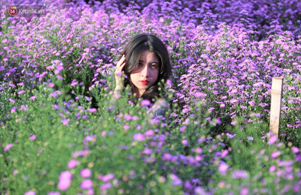 Dân tình chen chúc sống ảo tại vườn hoa thạch thảo đẹp lịm tim lần đầu được trồng ở Đà Nẵng - Ảnh 12.