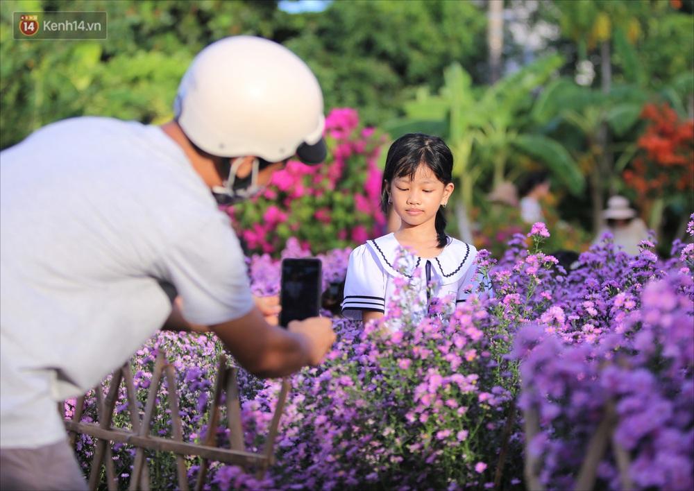 Dân tình chen chúc sống ảo tại vườn hoa thạch thảo đẹp lịm tim lần đầu được trồng ở Đà Nẵng - Ảnh 11.
