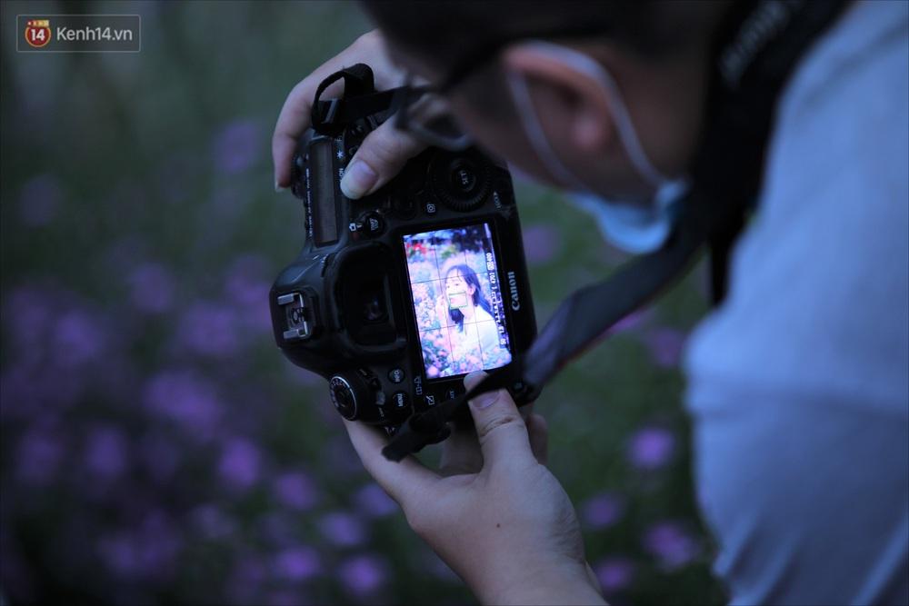 Dân tình chen chúc sống ảo tại vườn hoa thạch thảo đẹp lịm tim lần đầu được trồng ở Đà Nẵng - Ảnh 10.