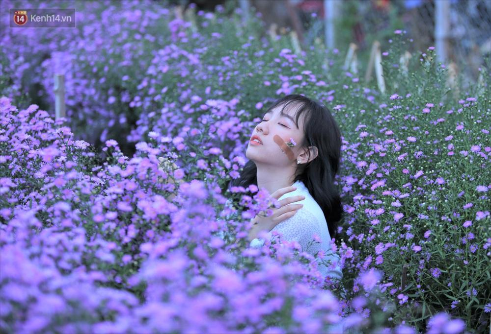 Dân tình chen chúc sống ảo tại vườn hoa thạch thảo đẹp lịm tim lần đầu được trồng ở Đà Nẵng - Ảnh 9.
