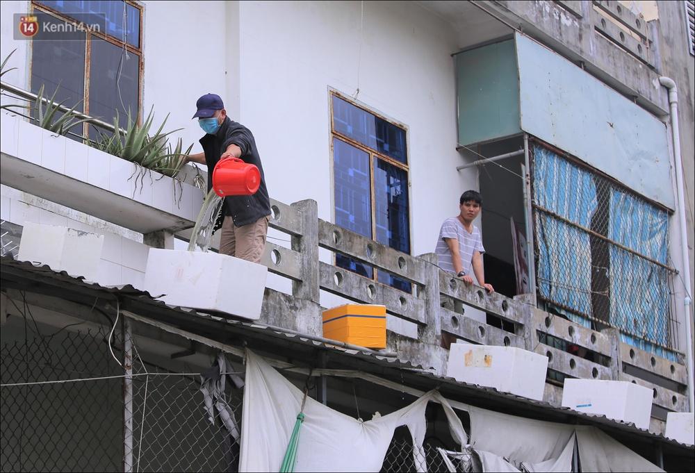 Ảnh: Đà Nẵng bắt đầu có gió giật mạnh, người dân hối hả chạy bão Vamco đang tiến sát đất liền - Ảnh 9.
